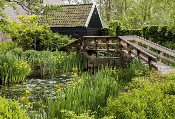 5 Awesome Things To Do in Giethoorn and surrounding